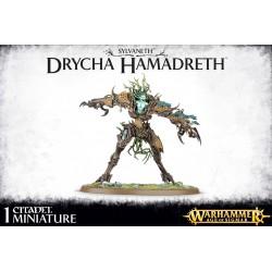 Sylvaneth Drycha Hamadreth (1)