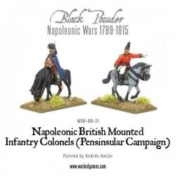 Mounted Napoleonic British Infantry Colonels (Peninsular)