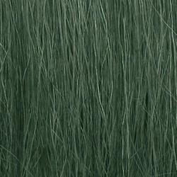 Medium Green Field Grass Salvaje Hieba Alta