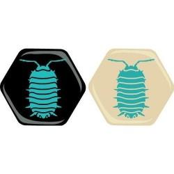 Hive Expansión: Bicho Bola