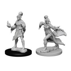 Elf Female Sorcerer
