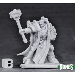 Crusader Ardent (Hammer)