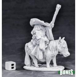 Dwarf Mounted Battle Mage