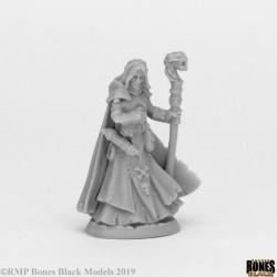 Dark Elf Wizard