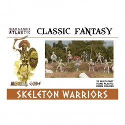 Classic Fantasy Skeleton Warriors (32)