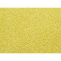 Wild Grass Golden Yellow