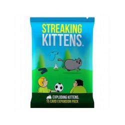 Streaking Kittens (Spanish)