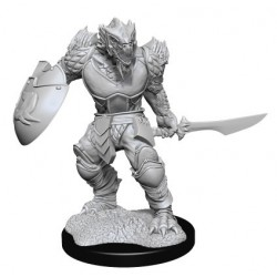 Dragonborn Fighter Male