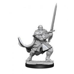 Half-Orc Paladin Male