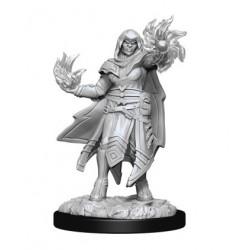 Hobgoblin Fighter Male & Hobgoblin Wizard Female