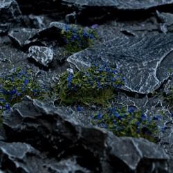 Blue Flowers Wild