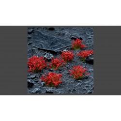 Red Flowers Wild