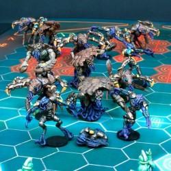 Kalimarin Ancients - Nameless Team