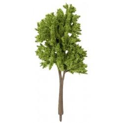 Árboles Primavera (5) 10-14cm