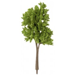 Trees Spring, 5 pieces, 10 - 14 cm high