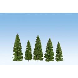 Fir Trees Dark Green