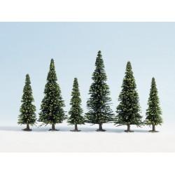 Noch Model Spruce Trees, 10 pcs., 6 - 15 cm high