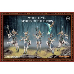 Wood Elves Sisters of The Thorn (5)