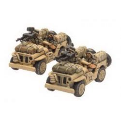 LRDG / SAS Jeep (2)