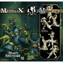 Moon Shinobi