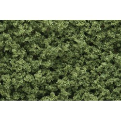 Light Green Underbrush
