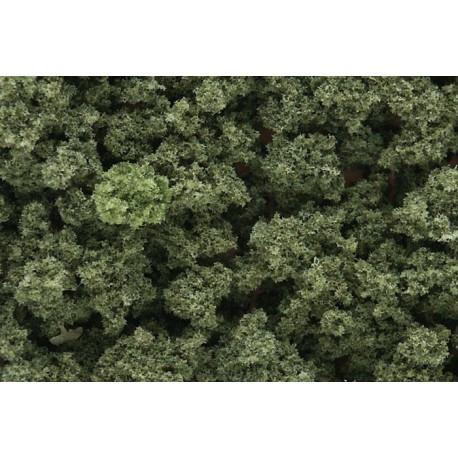 Olive Green Bushes
