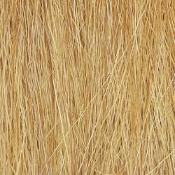 Harvest Gold Field Grass Salvaje Hieba Alta