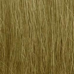 Light Green Field Grass Salvaje Hieba Alta