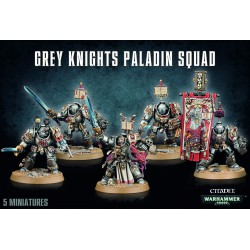 Grey Knights Paladin Squad (5)