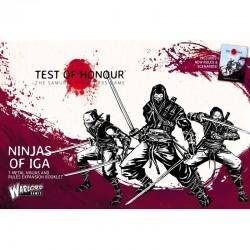 Ninjas of Iga
