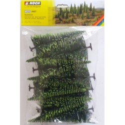 Model Spruce Trees (10)