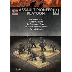 Assault Pioneer Platoon (40 figs Plastic)