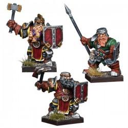 Dwarf Reinforcement Pack (Castellano)