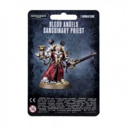 Blood Angels Sanguinary Priest (1)