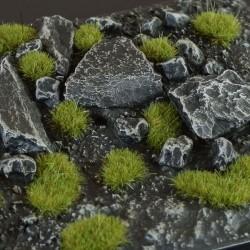 Dry Green 2mm Wild