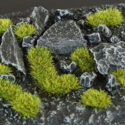 Moss 2mm Wild
