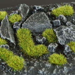 Moss 2mm Small